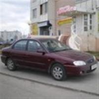 Фото автомобиля инструктора по возжению: Щербак Владимир